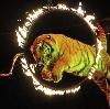 Цирки в Байконуре